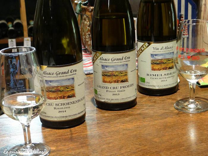 zellenberg ecotourisme vins blancs bio becker