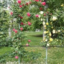 Jardin des plantes Toulouse