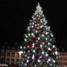 Sapin de Noël place Kléber rouge