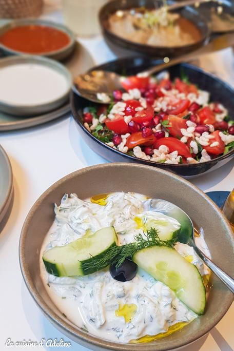 Tzatzi cuisine grecque