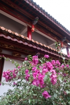 Fleur du temple bouddhiste de Kunming