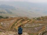 Visiter les rizières en Chine
