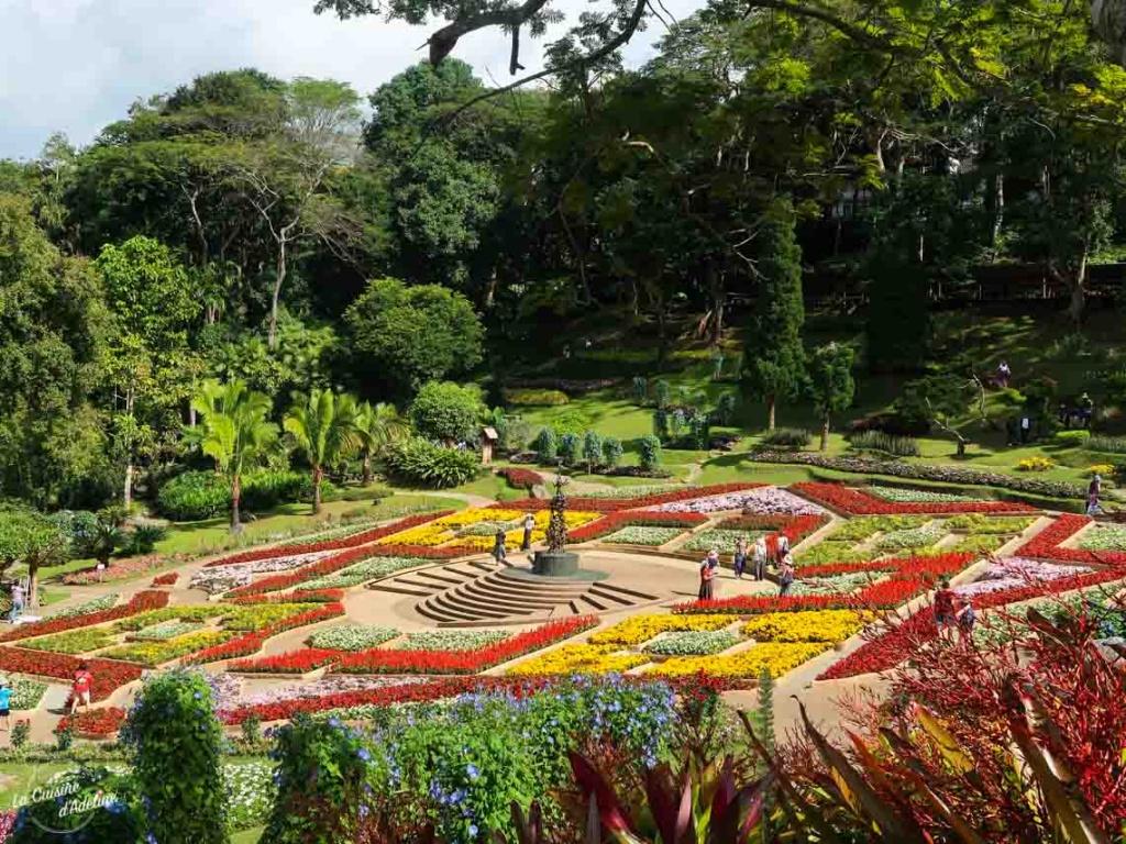 Mae Fah Luang Garden Chiang Rai Thailande
