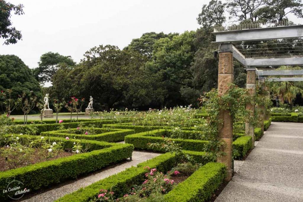 Jardin Botanic - Botanical Garden Sydney