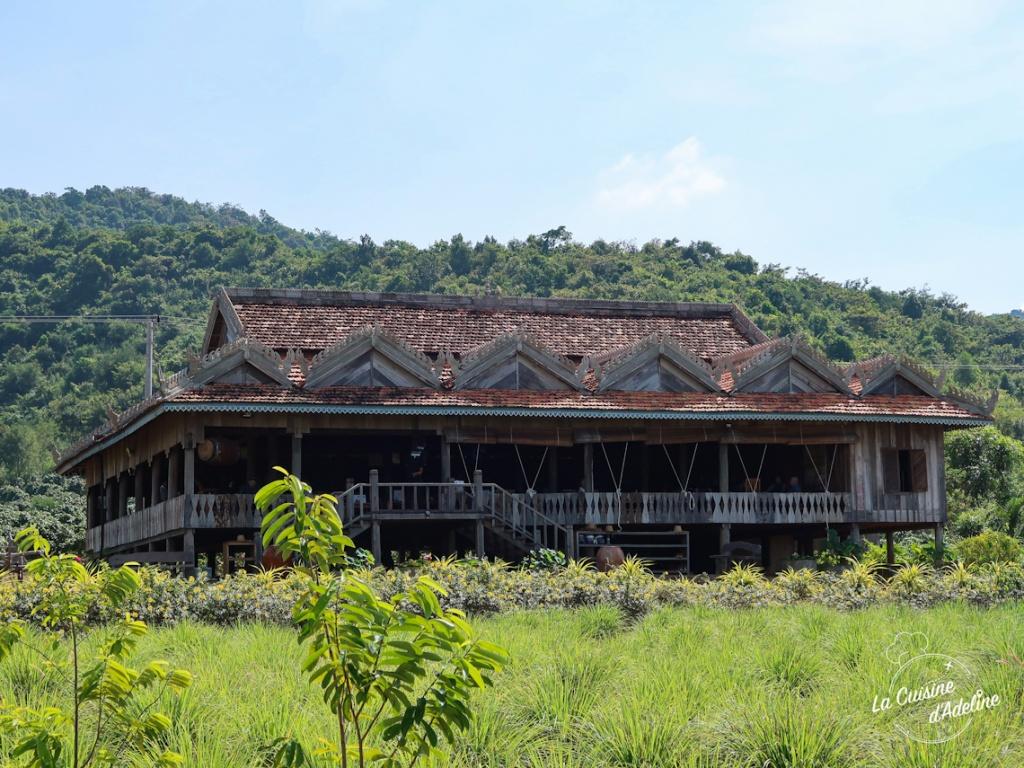La plantation poivre de Kampot