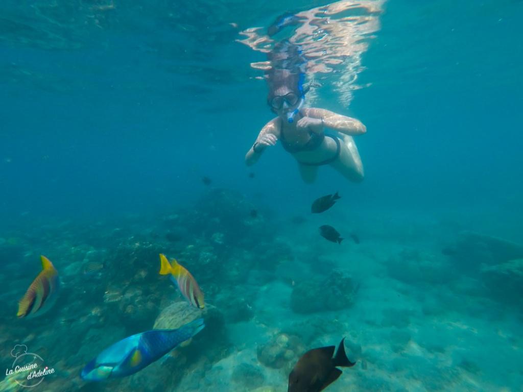 Snorkelling Bali Indonesie