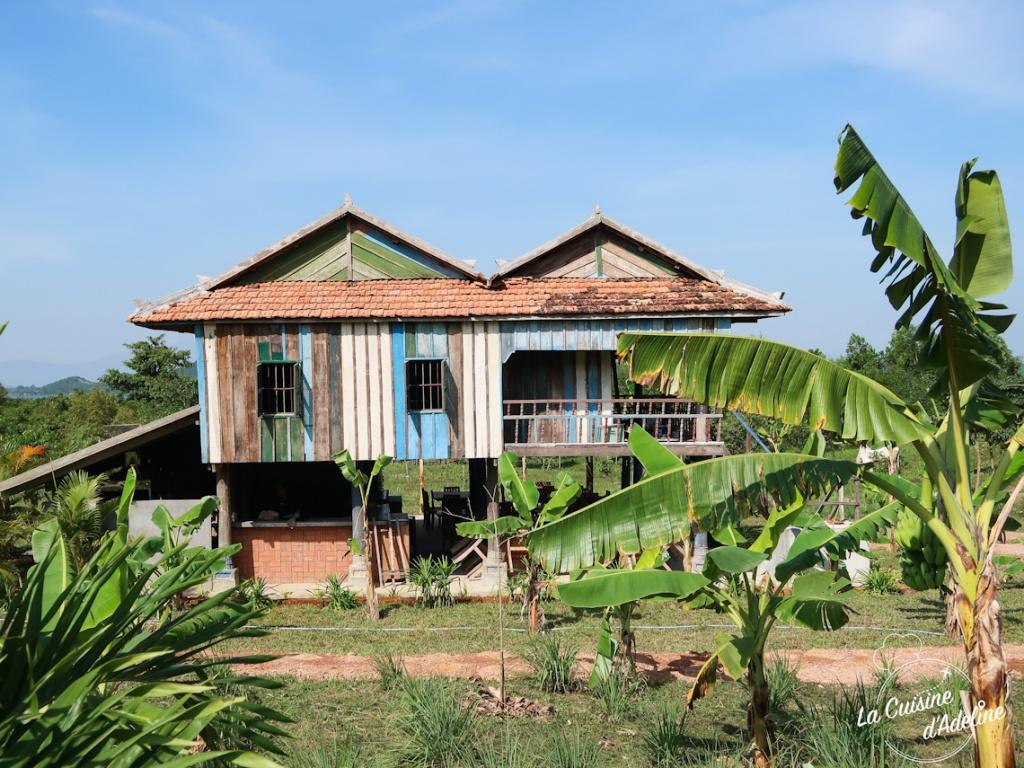 Visite de la plantation poivre de Kampot