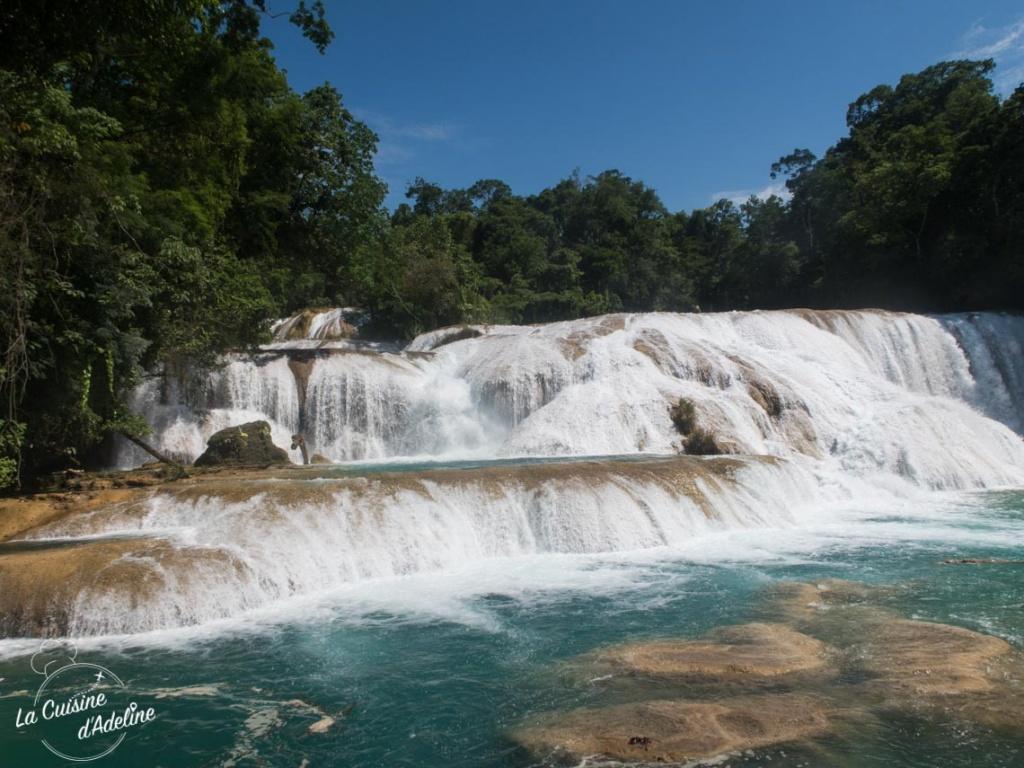 Agua Azul chutes Pallenque Mexique