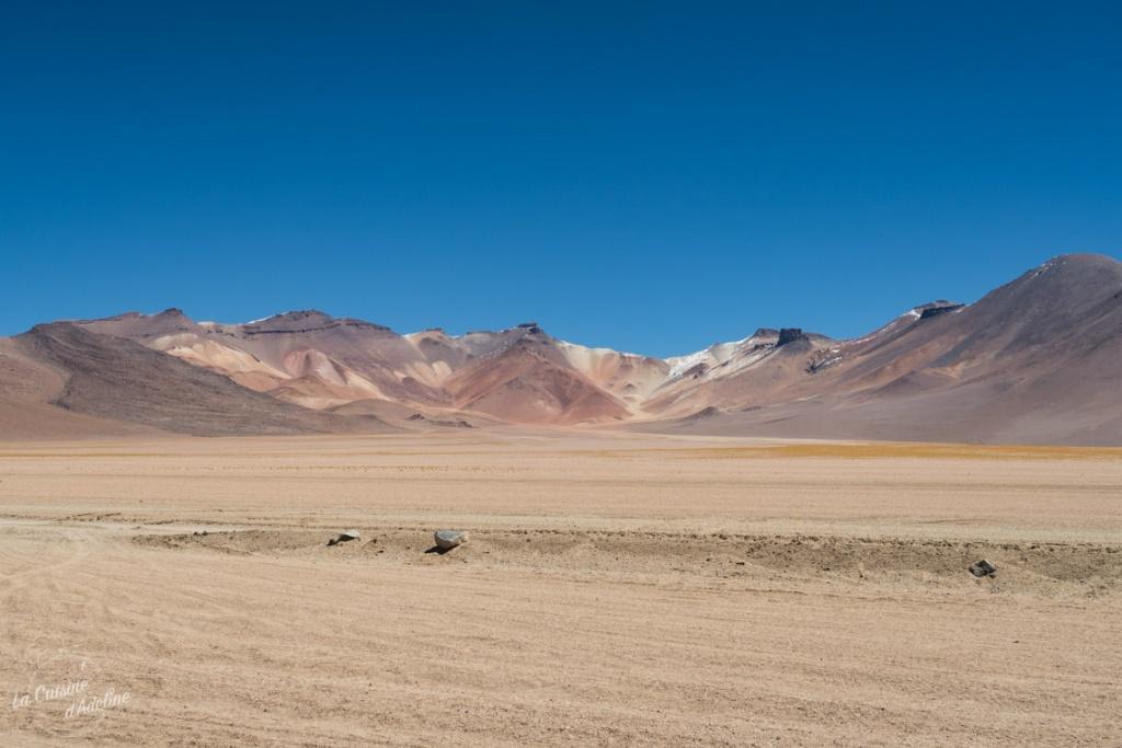 Desert Salvador Dali Sud Lipez Bolivie