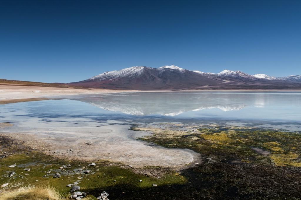 Laguna verde Sud Lipez Bolivie road trip Salar Uyuni