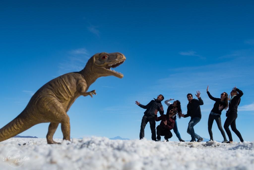 Photo en perspective au Salar d'Uyuni idée