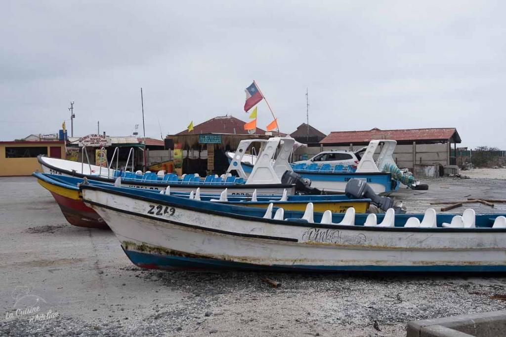 Isla Damas depuis La Serena itinéraire