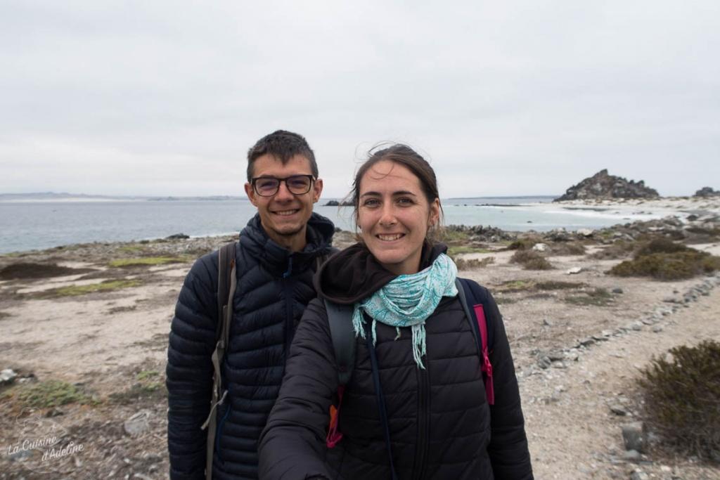 Isla damas punta choros et les manchots de Humboldt infos blog voyage