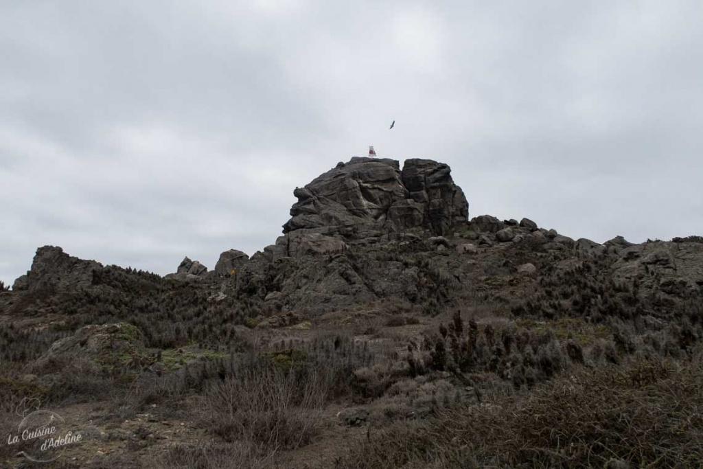 Mirador Isla Damas Chili